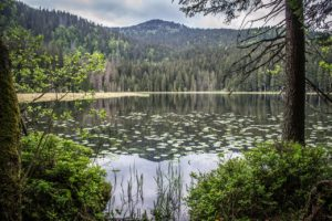 jezera na šumavě